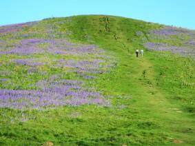Walkers tackling the Peak