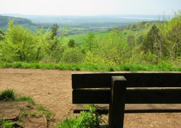 Standish wood - bench and view May 2018 C Aistrop