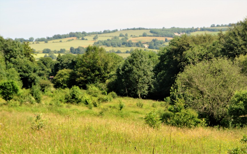 Rudge Hill - view from the site June 2018 C Aistrop